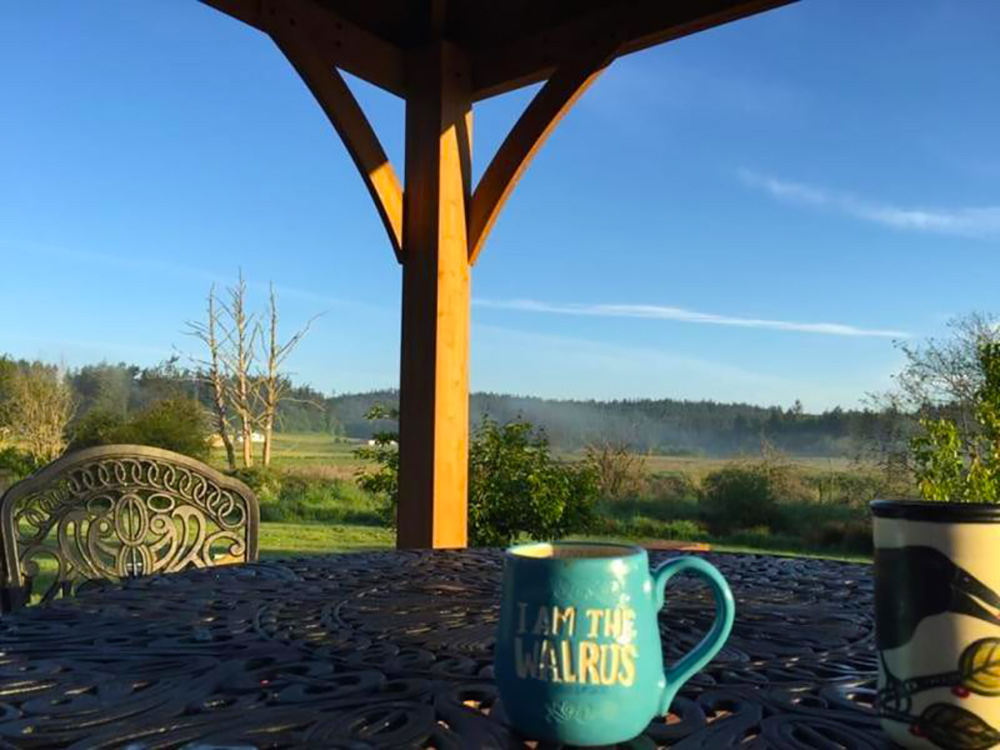 It's the second day of sipping morning coffeein our new gazebo